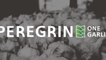Peregrín One Garlic, andaluzyjski producent czosnku na rynku polskim!